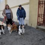Kearny Holds Annual Free Dog and Cat Rabies Clinic